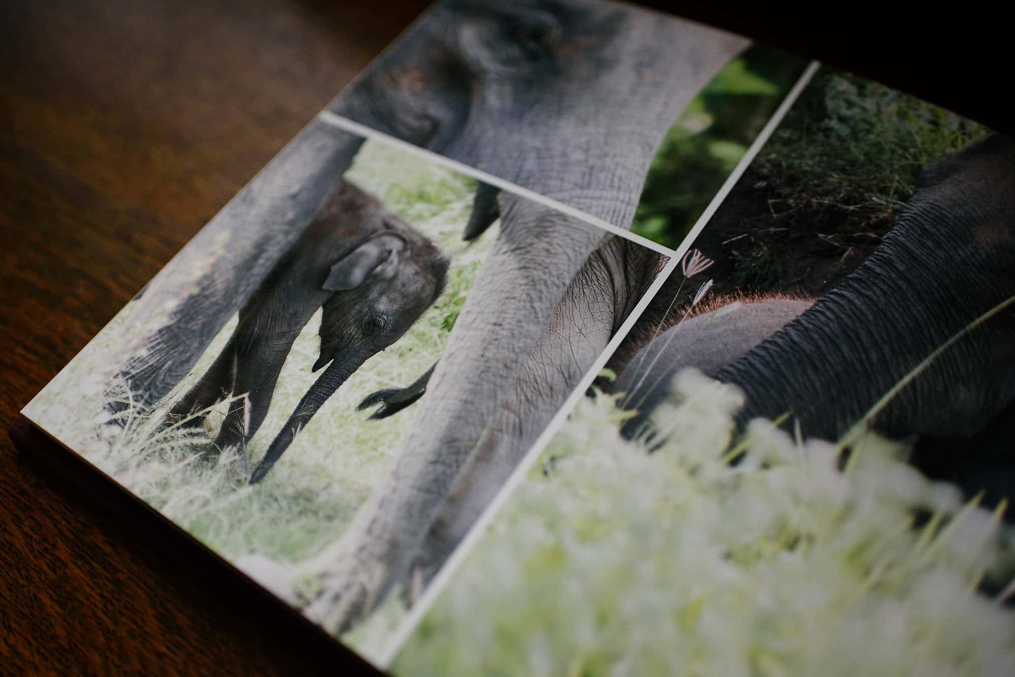 Printed images and albums 6