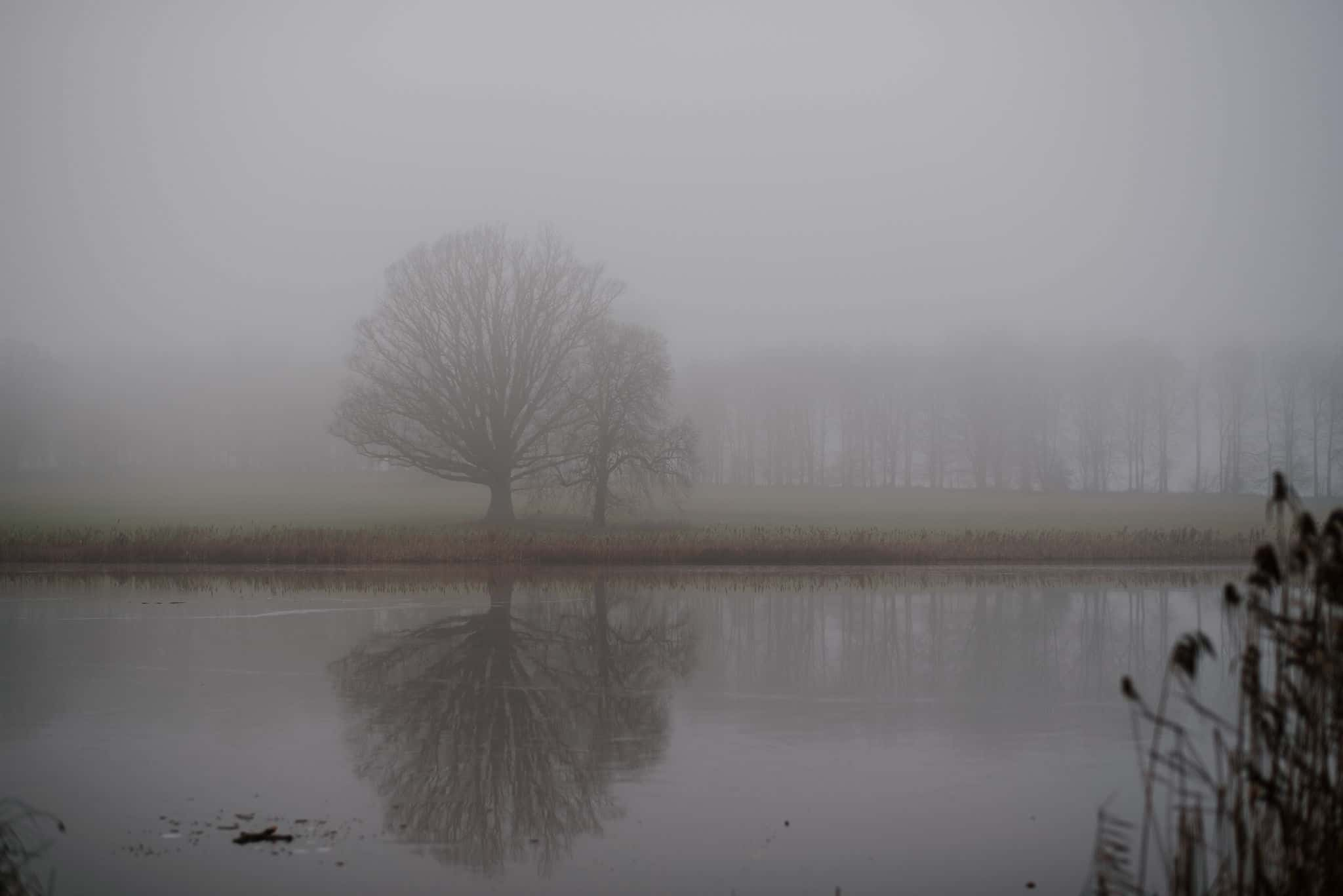 Blickling Hall in the fog 1