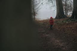 Blickling Hall in the fog 16