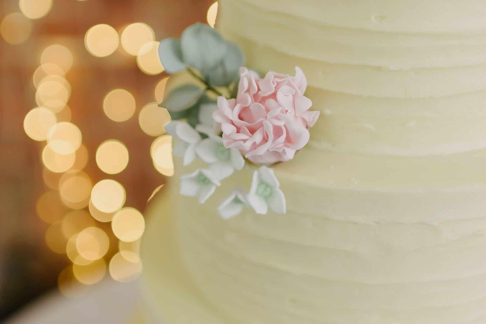 Bex & Neil - Norfolk Mead Wedding 16